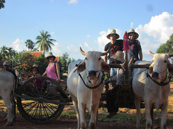 Ox Cart Adventure